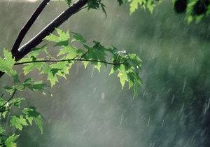 بارندگي