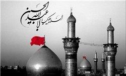 معجزهای که در حرم امام حسین (ع) رخ داد+ تصاویر