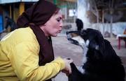 زنان حامی حیوانات بی پناه
