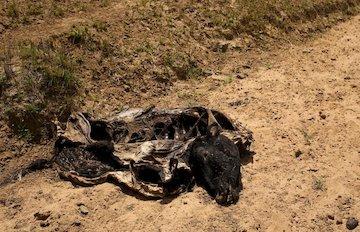 خشک سالی و گرسنگی در آفریقا