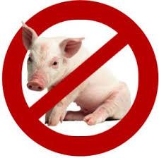 خوردن گوشت هایی که حرام است؟