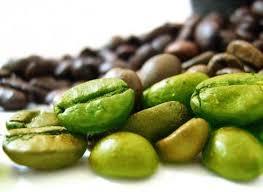 خواص قهوه سبز ویکی پدیا