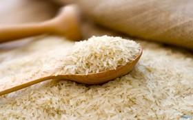 برنج.jpg