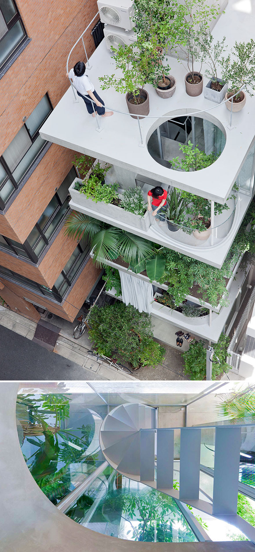 خانه ی گلخانه ای در توکیو