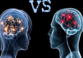 مغز انسان.png