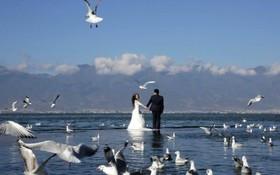 یک عروس داماد چینی در حال تصویربرداری آغاز زندگی مشترک