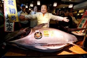یک رستوران دار در توکیو با یک ماهی تن 212 کیلویی در رستورانش عکس می گیرد ماهیی که 633 هزاردلار خریداری شده است