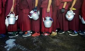 راهب های بودایی در صف برای دریافت شیر در یک مراسم مذهبی