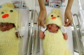 نوزادان در بیمارستانی در تایلند به مناسبت نماد سال نو در تقویم چینی که سال خروس است لباس این جانور را به تن کرده اند