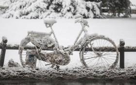 سرما در وسبادن در غرب آلمان