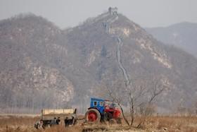 کشاورزان کره جنوبی در حال کار در منطقه ای که مرزی که دیوار چین دیده می شود