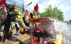 جشن سونکراندر تایلند که با پاشیدن آب سال نو را جشن می گیرند.در عکس فیلی به خودرو حامل جهانگردان آب می پاشد