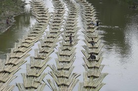 انتقال قطعات بریده شده بامبو در هند از طریق رود خانه لونگی  در تریپورا