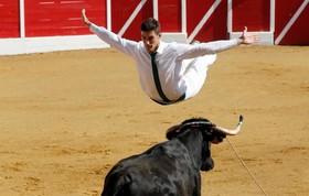 نمایش گاو بازی در فرانسه