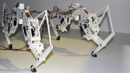 یوزپلنگ روباتیک ساخته شد