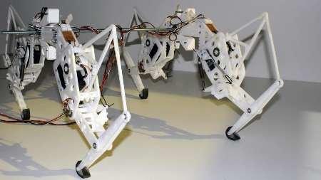 یوزپلنگ رباتیک