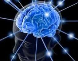 صحبت کردن مغز و عضلات بدن با یکدیگر!