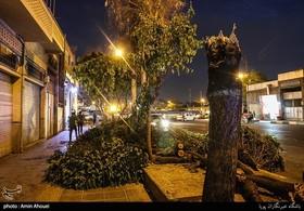 طوفان امروز در تهران ۶۰ حادثه برجای گذاشت