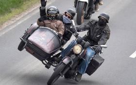 نمایش موتور سواری در در آلمان