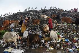 یک مرکز جمع آوری زباله در هند