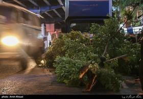 هشدار نسبت به وقوع طوفان و بارش شدید در مازندران