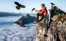 عکس بی مانند از یک عکاس آلمانی که برفراز قله ای در سوئیس در حال غدادان به پرندگان است