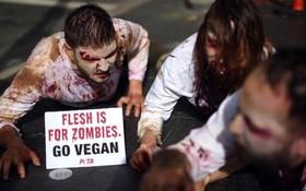 تظاهرات حامیان حیوانات مقابل رستورانی در آمریکا برای جلوگیری از خوردن گوشت و تشویق گیاهخواری با شمایل زامبی ها