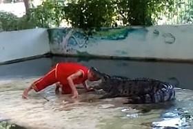 کروکودیل وحشت در باغ وحشی در تایلند
