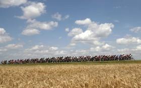 بخشی از مسابقه تور دو فرانس