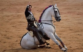 نمایش یک گاوباز در جشنواره سن فرمین در پامپلونای اسپانیا پیش از آغاز نمایش گاو بازی با اسب