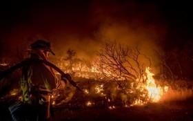 تلاش آتش نشان ها برای خاموش کردن آتش در کالیفرنیا