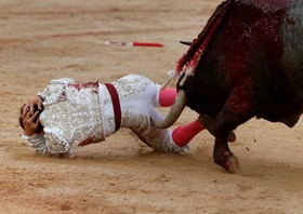 گونزالو کابالور گاوباز مشهور اسپانیایی در جریان جشن سنت فرمین توسط گاو خشمگین و زخمی به شدت مجروح شده است                                  Spanish bullfighter     Gonzalo Caballero is gored during a bullfight at the San Fermin festival in Pamplona, northern Spain