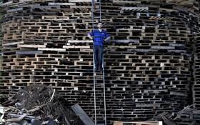 یک مهندس بنای برج های چوبی برای آتش زدن در ایرلند شمالی برای مراسم سنتی