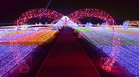 جشنواره نور در هارپین در چین در یک محوطه 60 هزار مترمربعی