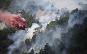 تلاش برای خاموش کردن آتش جنگل در فرانسه
