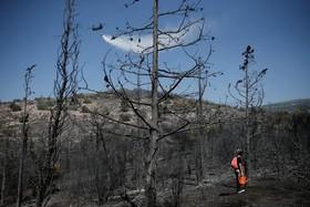 جنگل های سوخته اطراف آتن در یونان و هلیکوپتری که آب می پاشد