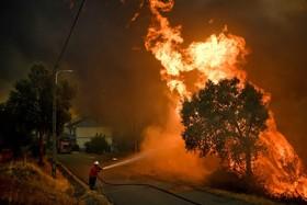 آتش سوزی جنگل ها در پرتغال