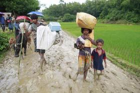 رسیدن پناهجویان مسلمان میانماری به بنگلادش