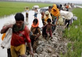 آوارگان مسلمان روهیگای در مرز میانمار و بنگلادش