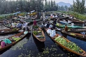 بازار میوه و تره بار در جامو مرکز کشمیر تحت کنترل هند