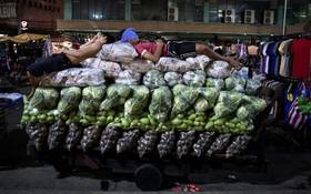 بازار میوه و تره بار در مانیل فلیپین