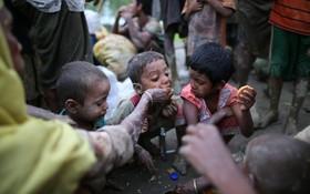 کودکان آواره روهینگای مسلمان در مرز میانمار و بنگلادش