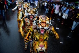 نمایش پولیکال یا رقص ببر در جشنواره اونام در شهر تریسور در هند
