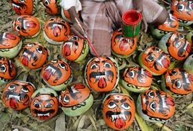 تزئین کدو تمبل در چنای در هند برای فستیوال مذهبی