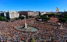 تظاهرات اسپانیایی ها در مخالفت با استقلال بارسلونا