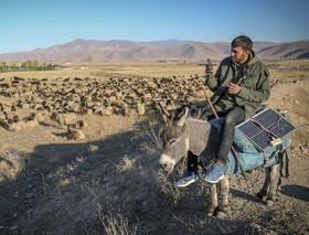 چوپانی در منطقه وان در ترکیه با باتری خورشیدی گوشی موبایل را شارژ می کند