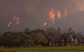 آتش سوزی در کالیفرنیا که تاکنو چهل کشته برجا گذاشته است