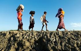 آوارگان روهینگیا میانماری در مرز بنگلادش