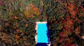 تصویری پاییزی از منطقه ای در شنیانگ در چین