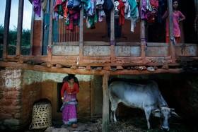 خانه ای در نپال